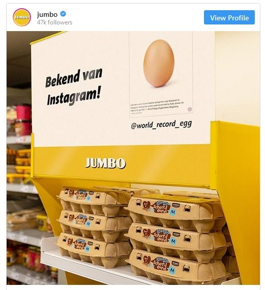 jumbo-world-record-egg